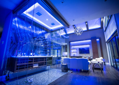 a wine cooler with great lighting, mural and countertop - modern design